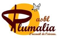 Plumalia logo 1