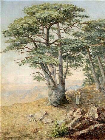 Sous un Cèdre pinxit Alcide Bariteau (1862-1943)