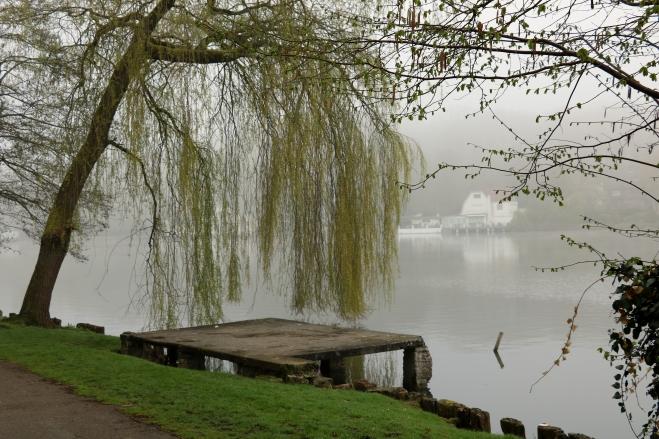 1 Lac de Genval 4.2018 C © Monique D'haeyere 4