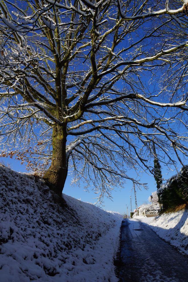 Rue de l'Augette B Rixensart (neige) 12.2014 © Eric de Séjournet - 21